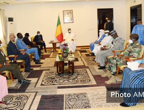 Transition : Goodluck Jonathan salue l'appui du président Bah N'Daw